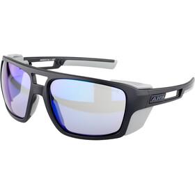 Alpina Skywalsh VLM+ Glasses, negro